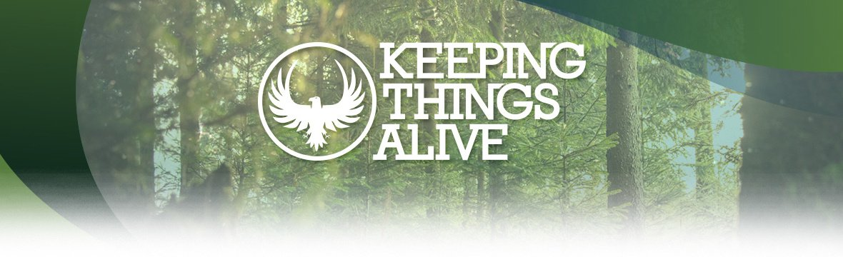 "Sarah Baird And Let There Be Light International Featured On ""Keeping Things Alive"" Podcast"